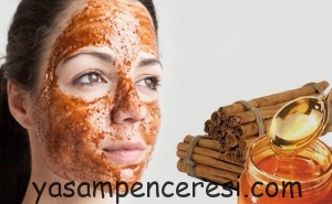 how-to-remove-blackheads-cinnamon-paste
